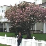 Sag Harbor Inn Photo