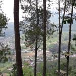 Landscape - Omah Kayu Photo