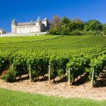 Ophorus Bordeaux Wine Day Tours