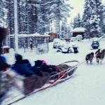 滑雪和賞雪遊覽