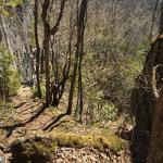 Jones Bluff Loop and Sydney Bay Heavenly place