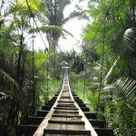 Suspension bridge to beach