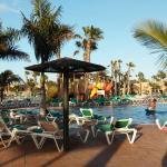 Oasis Duna Photo