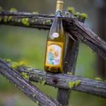 Wine on a Vine