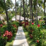Bayview - The Beach Resort Foto