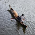 sur les backwaters