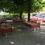 Unseri Gartäwirtschaft unter über hundertjährigä Cheschtänäbäum