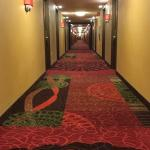 Super long horror-movie hallway
