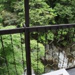 Nibukawa Onsen Hotel Image