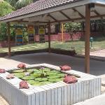 Orchard Resort Cafe