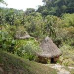 Cabañas ceremoniales de los indigenas con vestigios arqueologicos.