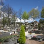Teilaufnahem des Friedhofes