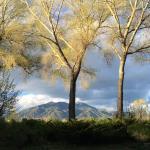 Photo de Hacienda del Sol