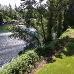 Balcony View of the Clackamas River