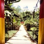 Photo de La Isla Hosteria