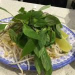 Bean Shoots, Herbs, and Lime Slices