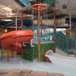 Photo de Quality Inn & Suites Palm Island Indoor Waterpark