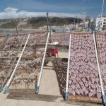 drying fish at Nazare Beach
