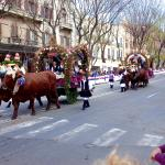 The procession of decorated ox carts at Festa di Sant'Efisio