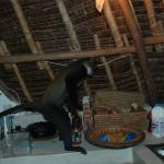 Lock away your food - the monkeys come and visit!!!