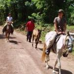 Horse Back Ride Tour