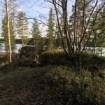 Foto di Hotelli Mesikämmen
