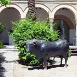Foto de Museo Municipal de Arte Taurino