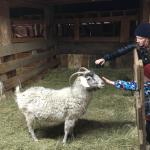 Our spring break adventure at Diamond T Ranch!