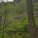 Farmington Canal State Park