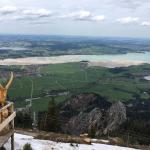 der halbleere Forggensee vom Tegelberg aus gesehen, 9. Mai 2016