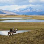 Riding on the Patagonian steppes at Hosteria Alta Vista
