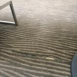 The broken carpet in the HH Garden Inn, (a tripping safety hazard) showing inconsistent quality