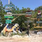 Photo de Florida Keys Jet Ski Rentals