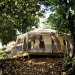 Camping tent $ 10 per person