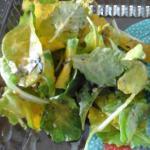bad lettuce