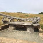 Fiscalini Ranch Preserve