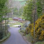 Landscape - Thurston Manor Photo