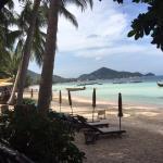 Palm Leaf Resort Foto