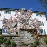 Photo of Schloss-Hotel Wartensee