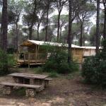 Photo of Yelloh! Village Camping Donarrayan Park