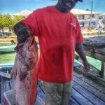 We bought this yellowfin grouper from the fishemen dock, over 13 pounds!