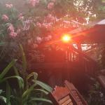 Photo de The River Garden