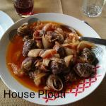 The Snails House