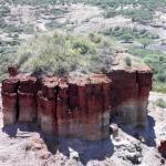 the Oldupai Gorge