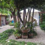 Photo of Orti di Cimabue
