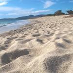 Plage accessible à droite de la plage de l'hôtel, par un sentier côtier dans la pinède!