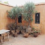 Beautiful Riad Azzouna 13
