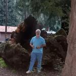 Big Sur Campground & Cabins Picture