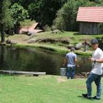 Truchas Selva Madre Costa Rica