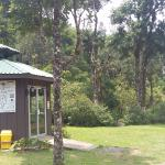 Recepción de Ficus Trails rodeada de hermosos árboles